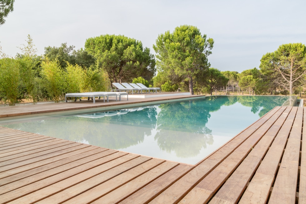 Swimming pool AS OLIVEIRAS @COMPORTA